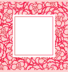pink begonia flower picotee first love banner card vector image