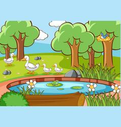 Scene with ducks and bird pond vector