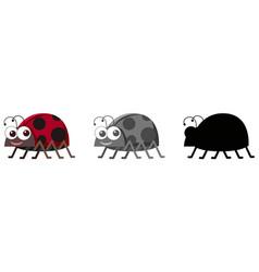 set ladybug character vector image
