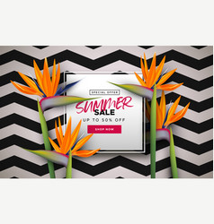 summer sale banner template tropical flowers vector image
