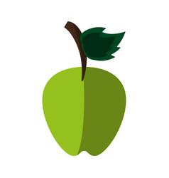 Sweet fruit kiwi vector