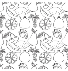 Berries and fruits vector image vector image
