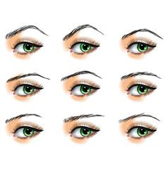 Nine different eyebrows set vector image