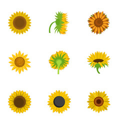 helianthus icons set cartoon style vector image