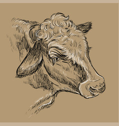 Portrait dreamy cow hand drawing brown vector