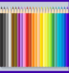 set of twenty four color pencils vector image