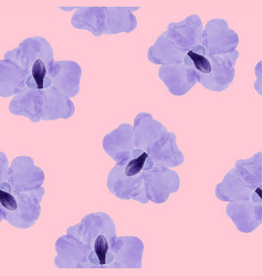 beautiful orchid violet flowers on pink vector image
