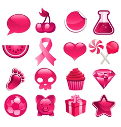 Various Pink Icons vector image vector image