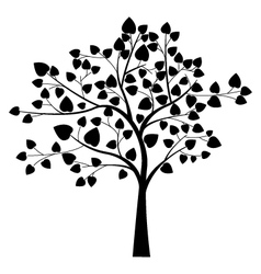 black tree silhouette vector image