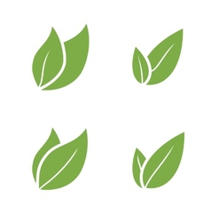 Leaf Pair Icon on Both Solid vector image