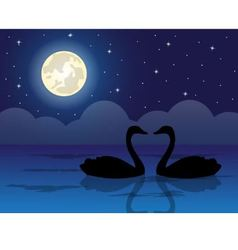 pair of swans in a pond vector image