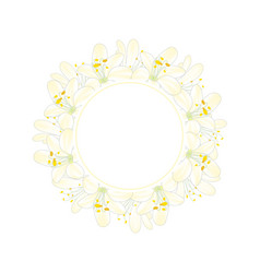 snow white agapanthus banner wreath vector image