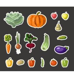Vintage garden banner with root veggies vector