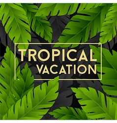 Tropical vacation card with banana palm leaves vector image