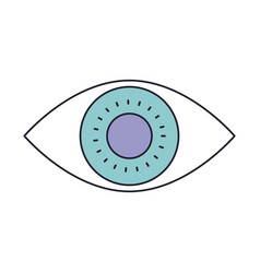 eye icon in color section silhouette vector image