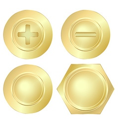 Set golden screws bolts and rivets vector