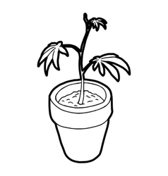 Cannabis plant icon outline style vector