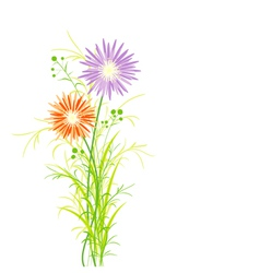 Springtime Colorful Flower vector image