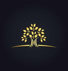 plant gold tree ecology logo vector image