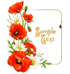 flower frame 8 poppy and camomile vector image vector image