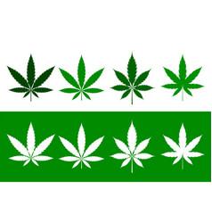 cannabis marijuana weed leaves set in flat style vector image