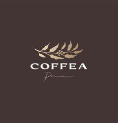 Coffea coffee tree sophisticated aesthetic logo vector