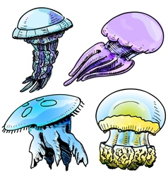 Jelly fish collection vector image
