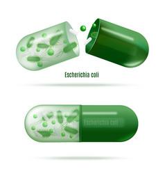 Medicines with probiotic bacteria realistic vector