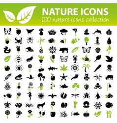 Nature icons collection vector