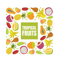 tropical fruits banner template with fresh sweet vector image