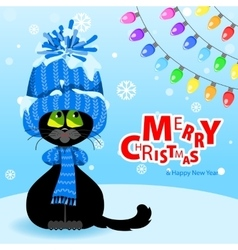 Black cat in a blue hat and scarf looks at the vector image