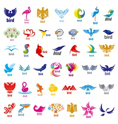 biggest collection of logos birds vector image