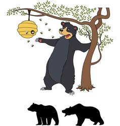 cute cartoon bear cub with honey and bees vector image