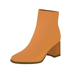 Brown women boots vector