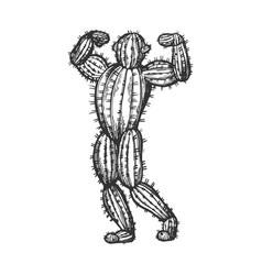 Cactus man posing sketch engraving vector