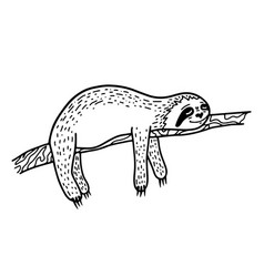 Lazy hand drawn sloth sleeping on a tree branch vector
