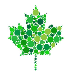 maple leaf dotted design isolated on white vector image