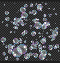 realistic soap bubbles with rainbow reflection vector image