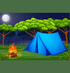scene camping out in the woods at night vector image