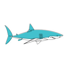 shark continuous line vector image