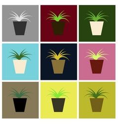 Assembly flat icons flower in pot aloe vector