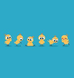 Cute baby chicken cartoon chick bird character vector