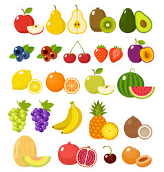 Fruit on a white background vector