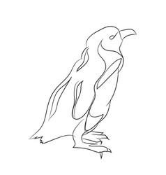 penguin line vector image