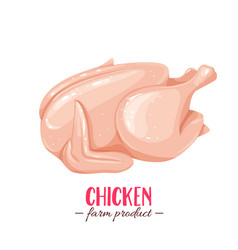 Raw whole chicken vector
