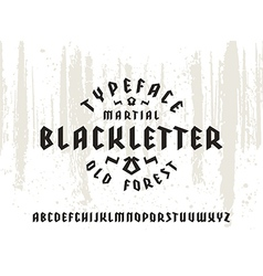 Sanserif font in black letter style vector image