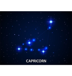 Set of Symbol Zodiac Capricorn vector image