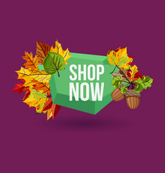 shop now geometric label with autumn leaves vector image