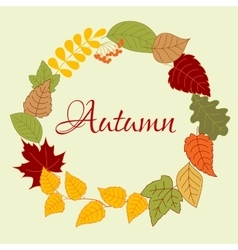 Frame with autumn leaves and rowan fruits vector image