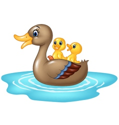 Cartoon ducks on the pond isolated vector image vector image